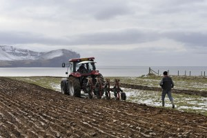 Stromness parish ploughing match