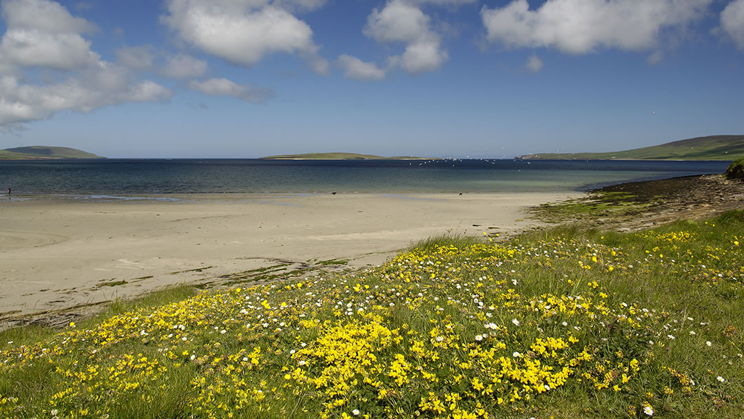 Aikerness beach in Evie, Orkney