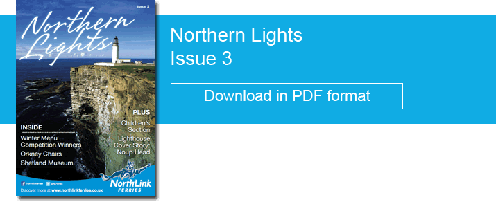 Northern Lights Issue 3