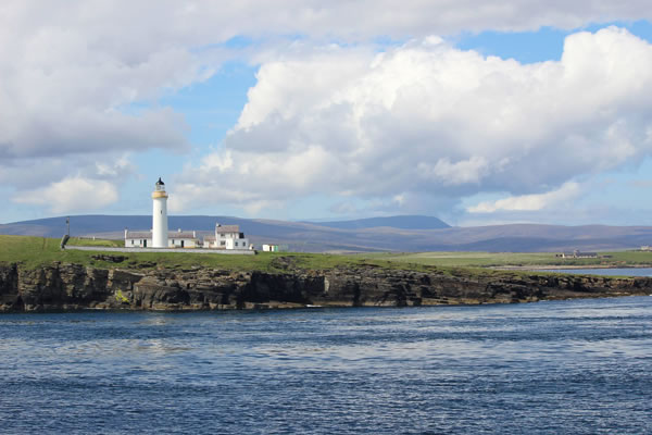 Orkney Nature Festival Cruise
