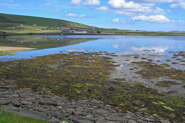 finstown taxis - Orkney Services