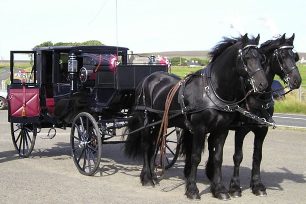 stromness by carriage - Orkney Services