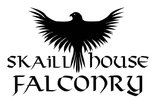 skaill house falconry - Orkney Services