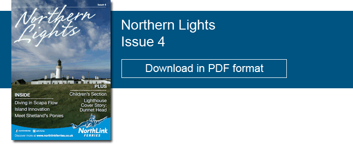 Northern Lights Issue 4