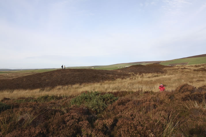 The Bronze Age site - the Knowes of Trotty - Orkney