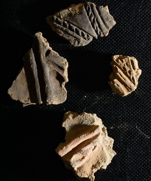 Fragments of decorated Grooved Ware pottery at the Ness of Brodgar, Orkney
