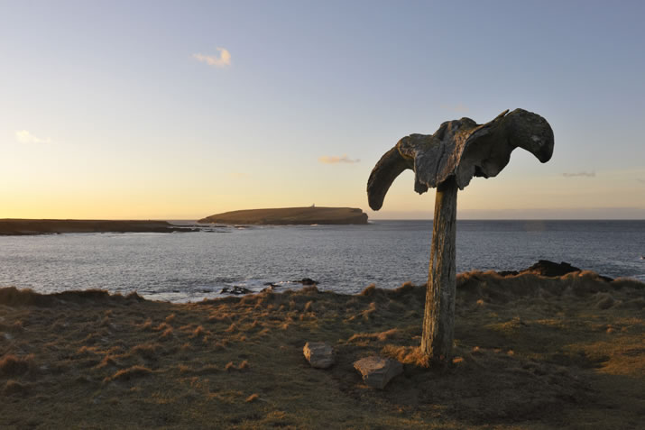 Whalebone and Brough of Birsay, Orkney