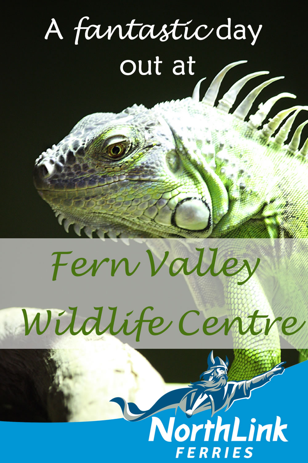 A fantastic day out at Fern Valley Wildlife Centre