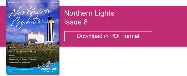 Northern Lights Issue 8