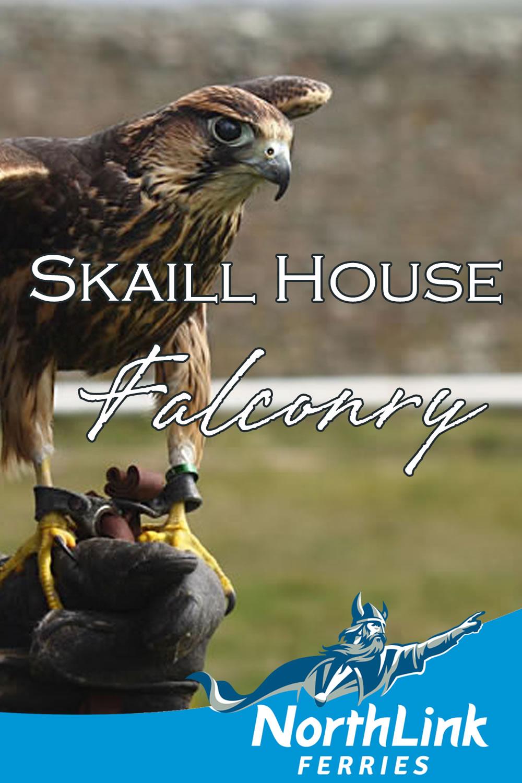 Skaill House Falconry