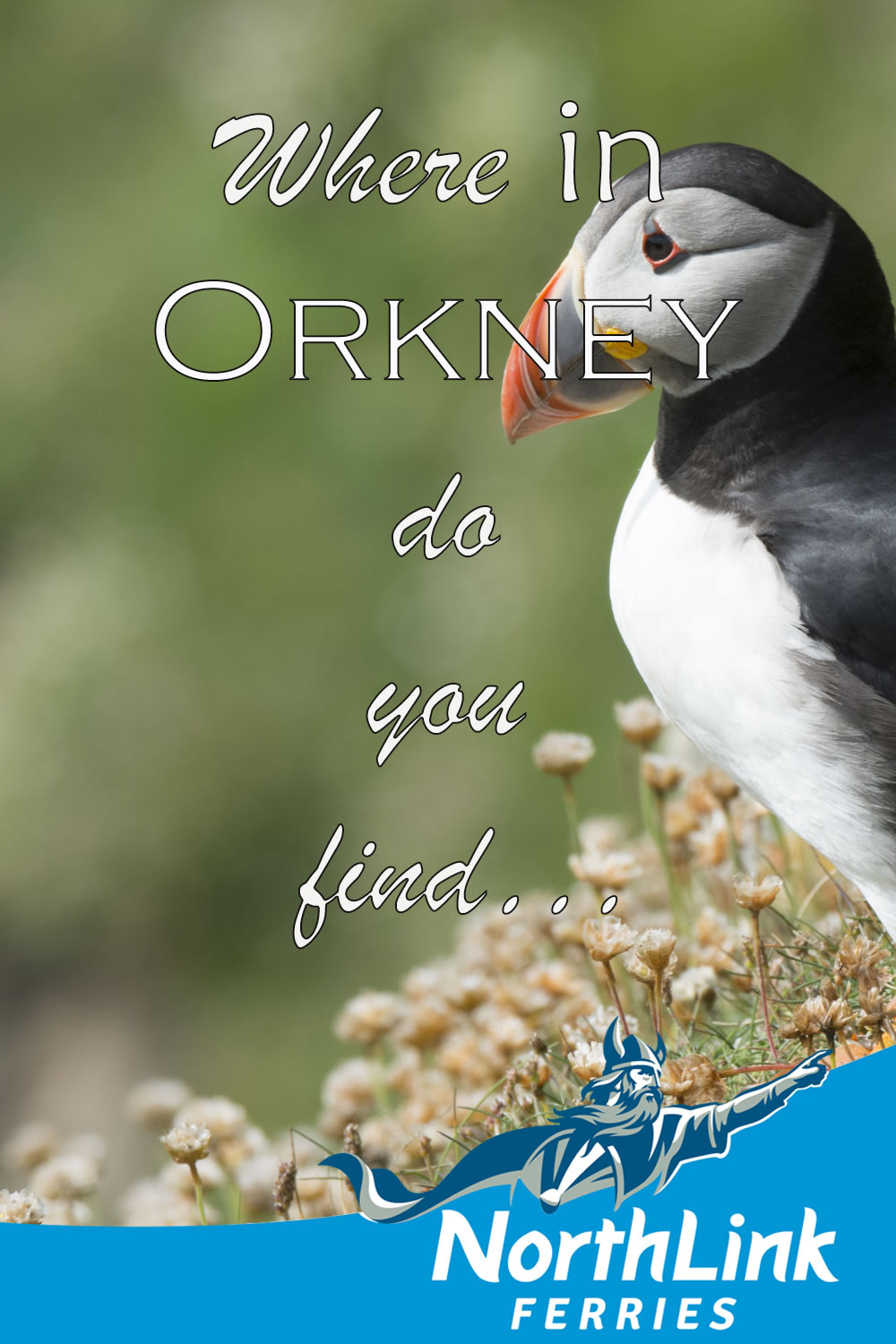Where in Orkney do you find...