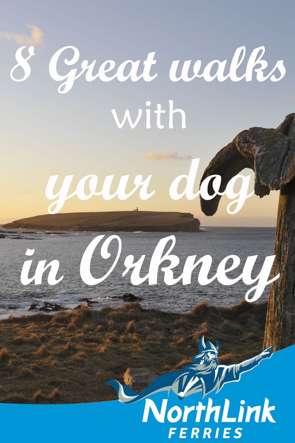 8 Great walks with your dog in Orkney