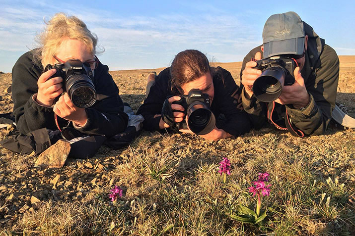 Photographing Early Purple Orchids by Hugh Harrop