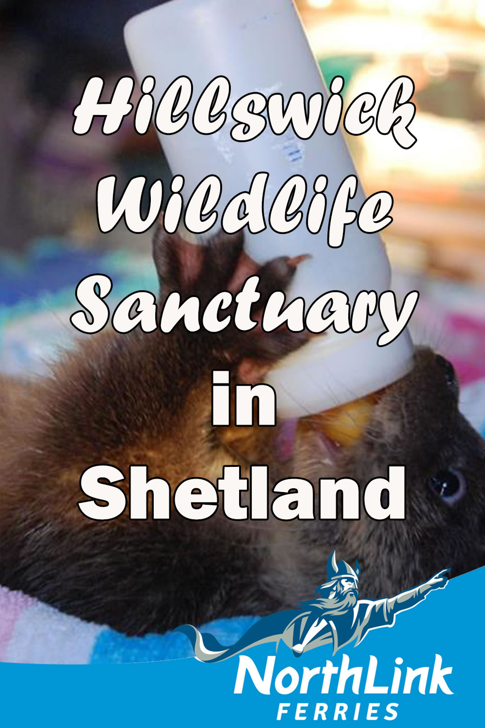 Hillswick Wildlife Sanctuary in Shetland