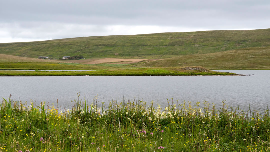 Tingwall loch - a Viking meeting site in Shetland