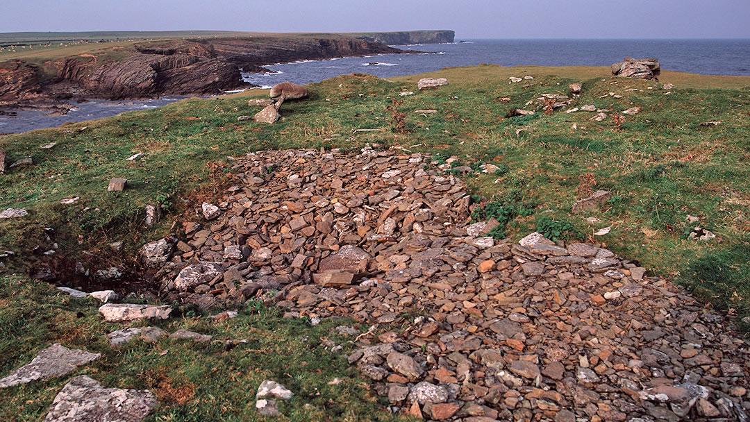 Lambness in Stronsay, Orkney