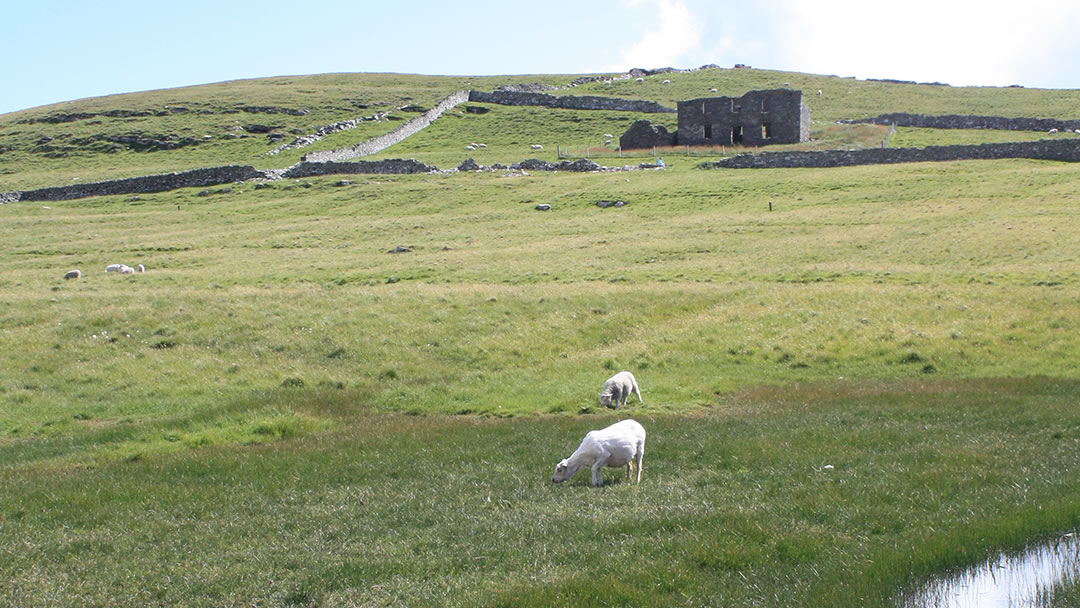 The Haa on Mousa in Shetland