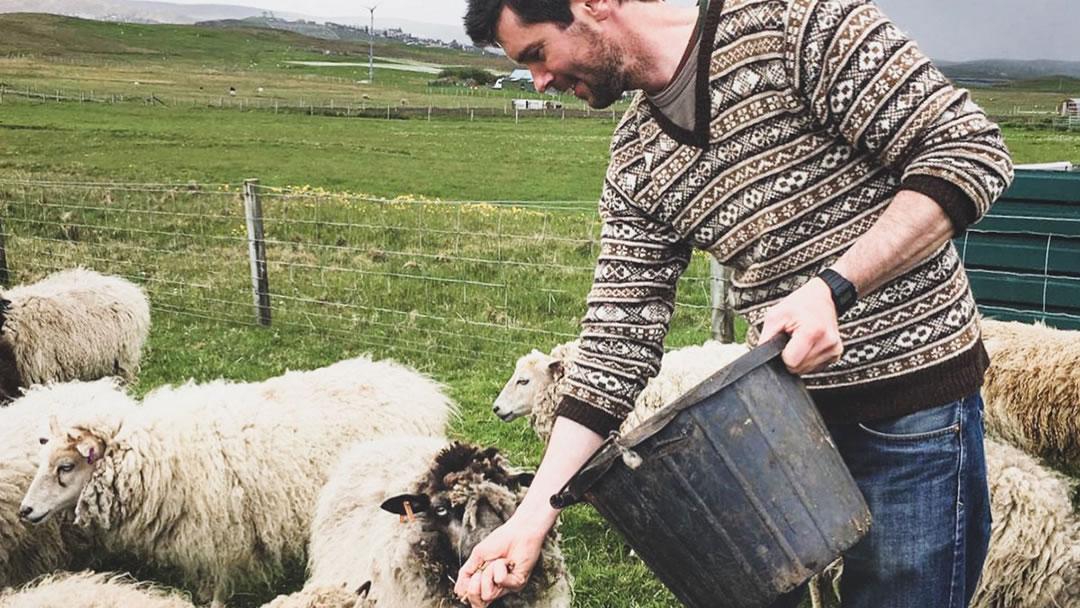 Chris Dyer and Shetland sheep