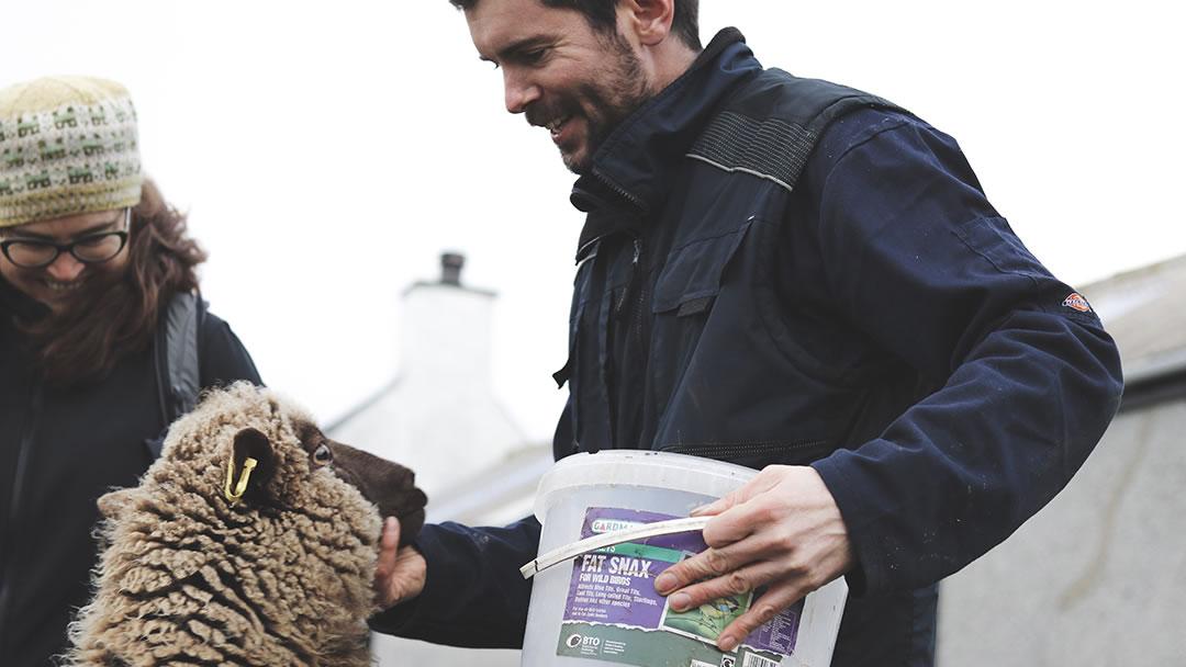 Chris Dyer and sheep