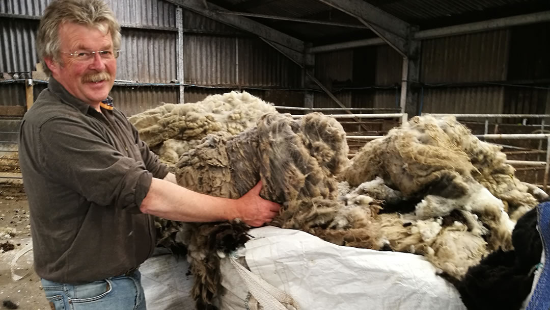 Ronnie Eunson and wool from his Shetland sheep