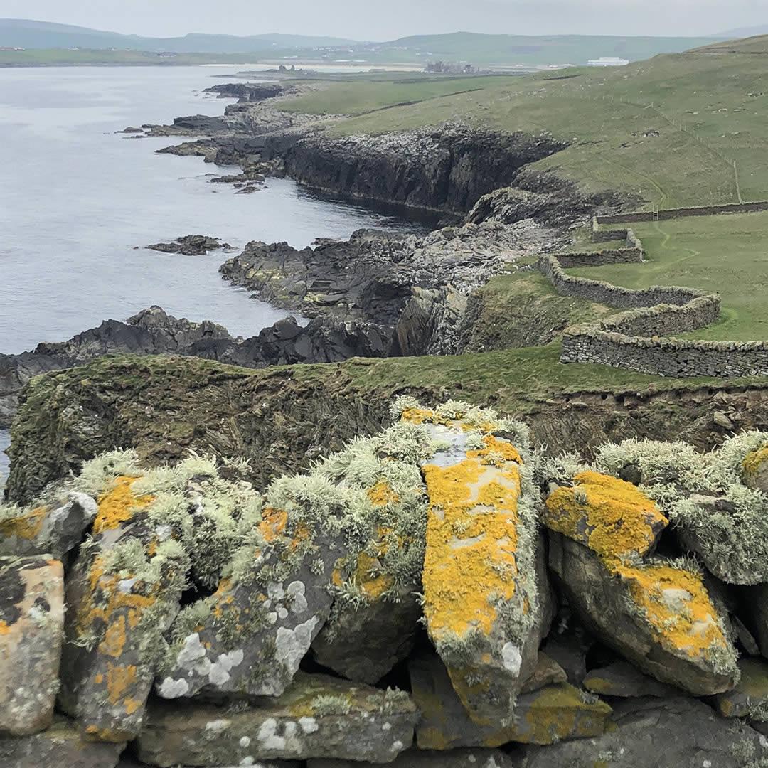 Sumburgh head looking North, Shetland