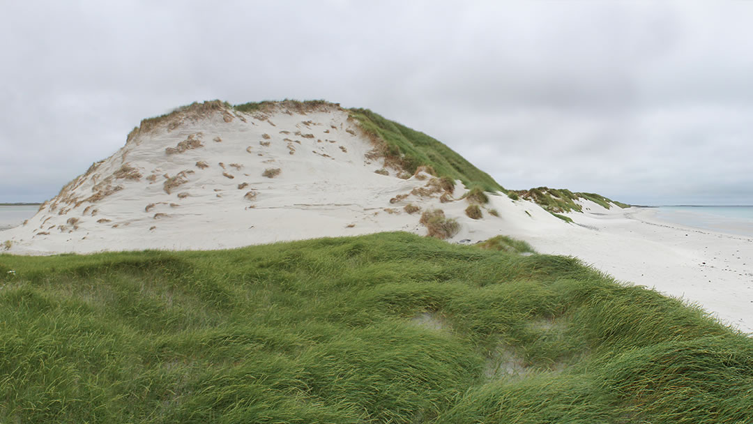 Tresness sand dunes in Sanday, Orkney