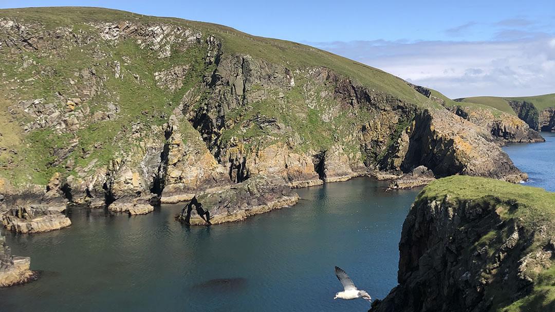 Neapaback in Yell, Shetland